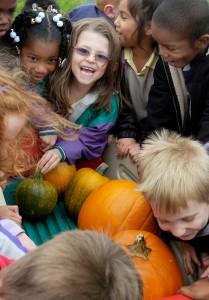 Lafayette pumpkin KW 1023