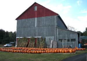 Barn 5   Wr_Eastburn_barn_pumpkins