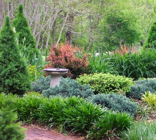 upcoming events backyard habitats for birds heritage
